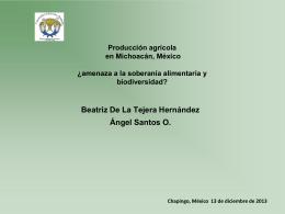 Producción agrícola en Michoacán: ¿amenaza a la
