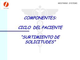 SURTIMIENTO DE SOLICITUDES