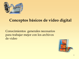 Conceptos basicos Video Digital_b
