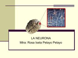 La neurona - Paginas Prodigy