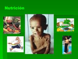Nutricion y Alimentacion academia