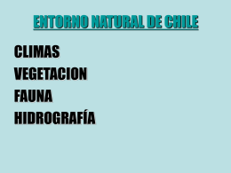 relieves, climas, vegetacion y fauna de Chile