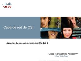 Protocolos de capa de red y protocolo de Internet (IP)