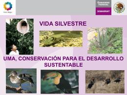 UMA, Conservación para el Desarrollo Sustentable