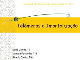 Telómeros e Imortalização - Medicina