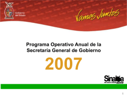 Programa Operativo Anual 2007 - Portal de Acceso a la Información
