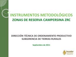 presentacion instrumentos constitucion- zrc