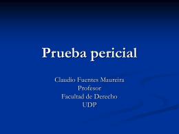 Ponencia Claudio Fuentes - Seminario Importancia del