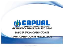 Informe Gestión de Capital Marzo 2014