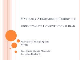 Marinas y Atracaderos Turísticos Consultas de Constitucionalidad