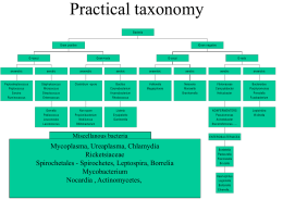 Classification, nomenclature, taxonomy,identification