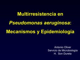 Multirresistencia en Pseudomonas aeruginosa