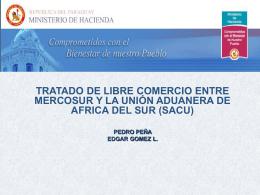 Tratado de Libre Comercio Entre Mercosur y la Union Aduanera de