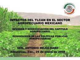 Senador_ZACATECAS_TLCAN__29enero2008
