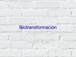 Biotransformación - apuntescientificos.org