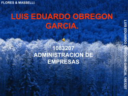 luis eduardo obregon garcia. 1083207 flores & masselli.