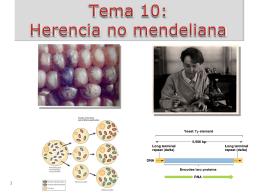 Tema 10: Herencia no mendeliana y elementos genéticos móviles