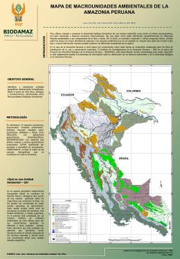 mapa de unidades macrounidades ambientales de la amazonia