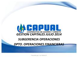 Informe Gestión de Capital Julio 2014