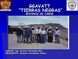 """GGAVATT """"TIERRAS NEGRAS"""" PENJAMO, GTO"""