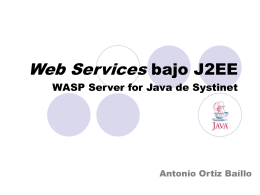 WASP Server for Java de Systinet