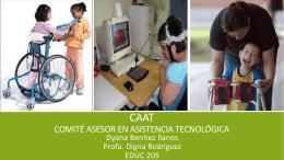 caat comité asesor en asistencia tecnológica