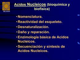 Acidos Nucléicos (Sección Bioquímica)
