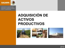 Adquisición de activos productivos