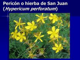 Tema 2. Plantas Medicinales
