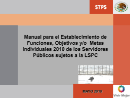 Manual de Metas Individuales 2010.