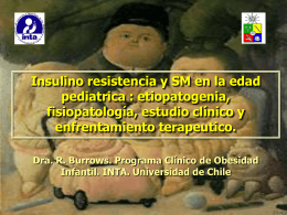 insulino_resistencia.. - Inta