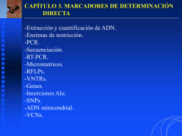 03-1-MarcaDirec copia