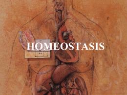homeostasis-1220758103162693