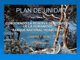 PLAN DE UNIDAD - Parquehuascarancll