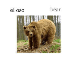 Los animales - espanol acelerado