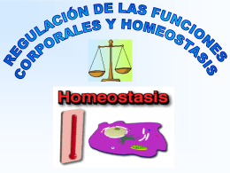 homeostasis - WordPress.com