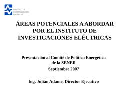 Áreas potenciales a abordar por el IIE