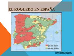 LA ESPAÑA SILÍCEA - Historia