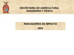 Indicadores impacto 2002