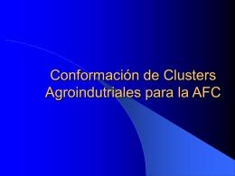 Conformación de clusters agroindutriales para la AFC