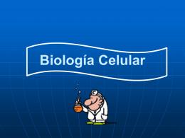 Clase 4 Biología Celular