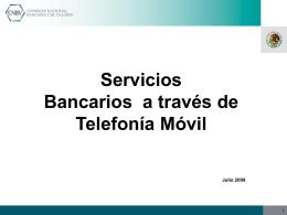 17609.62.59.1.Presentacion Penetración Telefonía Celular 2008