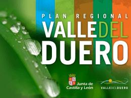 Plan Regional del Valle del Duero
