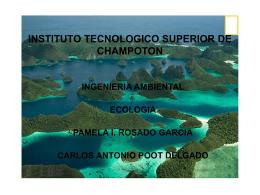 Diapositiva 1 - Instituto Tecnológico Superior de Champotón