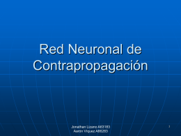 Red Neuronal de Contrapropagación