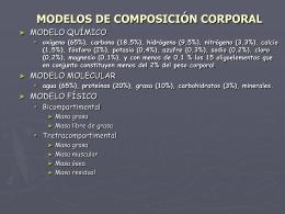MODELOS DE COMPOSICIÓN CORPORAL - E