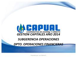 Informe Gestión de Capital Febrero 2014