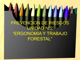"""PREVENCION DE RIESGOS UNIDAD N°2 """"ERGONOMIA Y"""