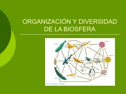 organización y diversidad de la biosfera