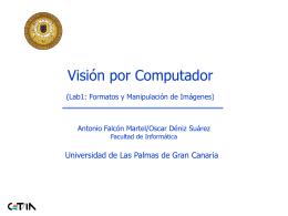 Format - Universidad de Las Palmas de Gran Canaria
